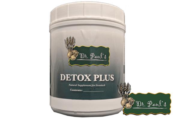 Detox Plus Bolus
