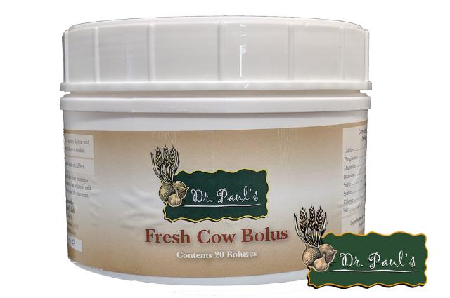 Fresh Cow Bolus