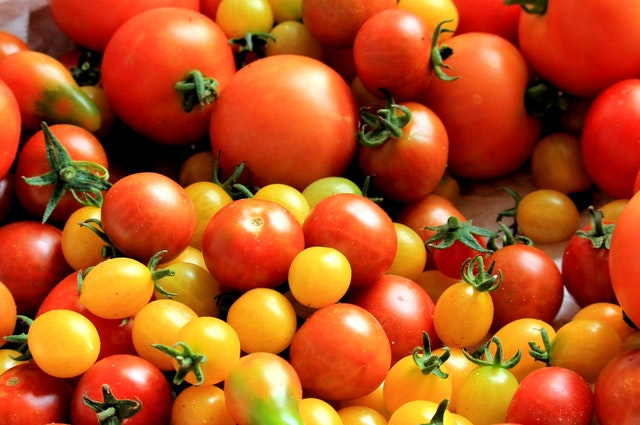 Tomato Grower 3-4-7