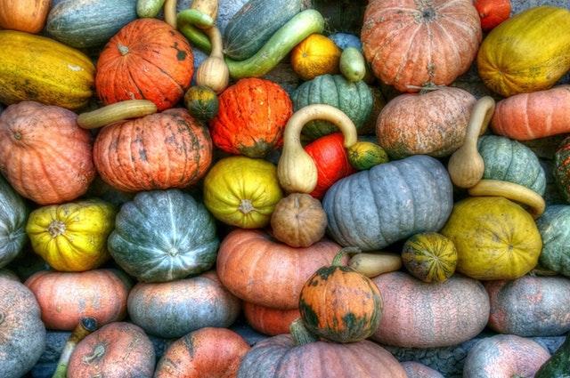 Pumpkin Program