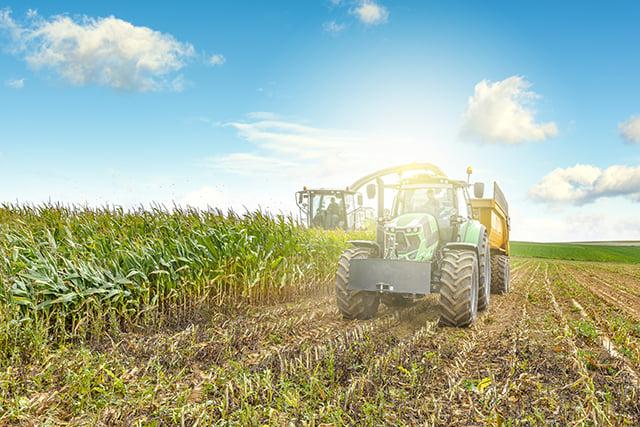 tractor cutting corn